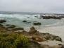 California Coastal Drive