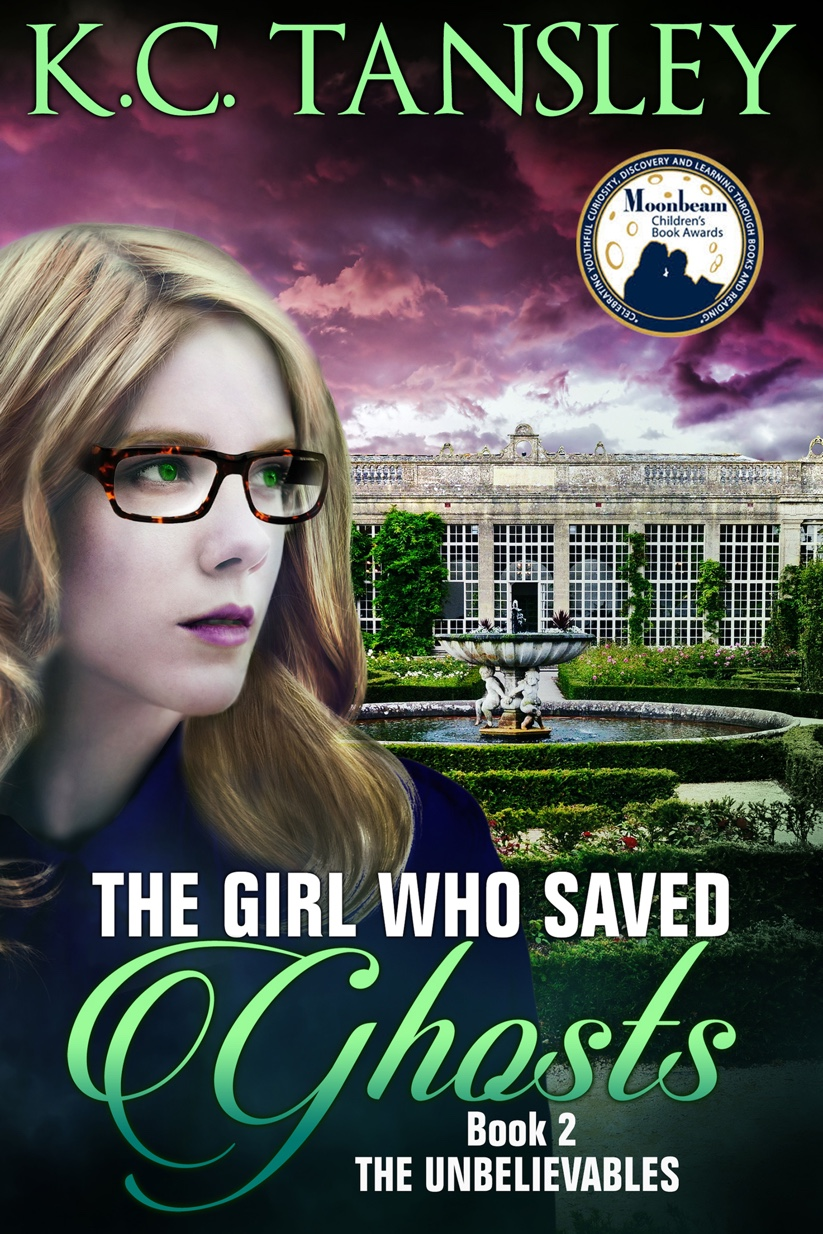 The Girl Who Saved Ghosts cover